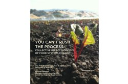 You Can't Rush the Process: Collective Impact Models of Food Systems Change
